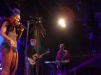 Doom Flamingo Live Concert Photos 2020