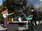 The Woolly Bushmen Live Concert Photos 2020