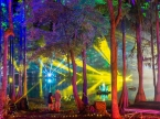 Suwannee Hulaween 2019 ⭐ October 25-27, 2019 ⭐ Spirit of Suwannee Music Park — Live Oak, FL ⭐ Photos by Carmelo Conte III  — instagram.com/melothird