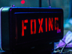 Foxing Live Concert Photos 2021