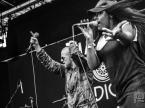collie-buddz-good-vibes-tour-live-review-3330