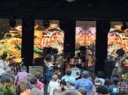 Suwannee Hulaween 2015 | Live Oak FL