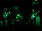 The Welzeins Concert Photos