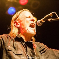 swans live review and concert photos