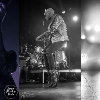 neon trees live review and concert photos