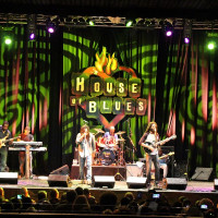The Wailers Live Review 2016