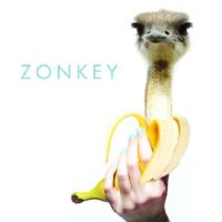 umphreys-mcgee-zonkey