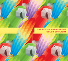 The Polish Ambassador - Color of Flight